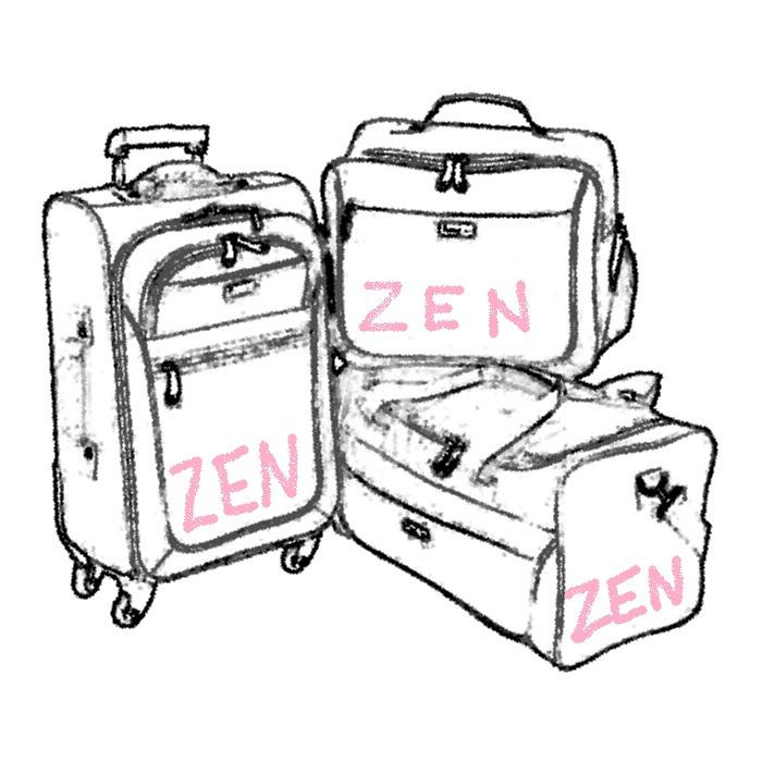 freeline-valise-sac-cabine-sac-de-voyage[1]